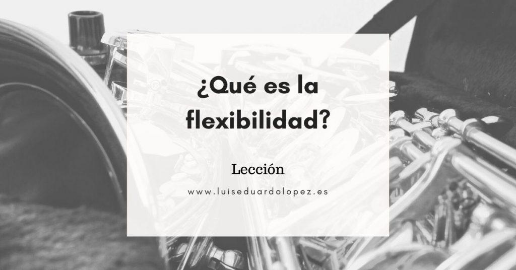 ¿Qué es la flexibilidad?